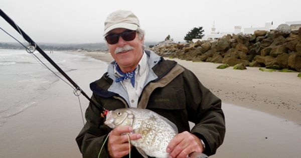 Glen short shows an atypical barred surf perch fly for Surf fly fishing