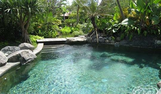 Swimming Pools That Look Like Ponds House Exterior Kitchen Massage Room Pond Pond And Garden Pool Waterfalls Backyard Dream Pools Cool Pools