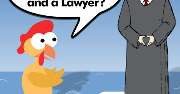 Lawyer And Chicken Joke Lawyer Jokes Lawyer Jokes Chicken