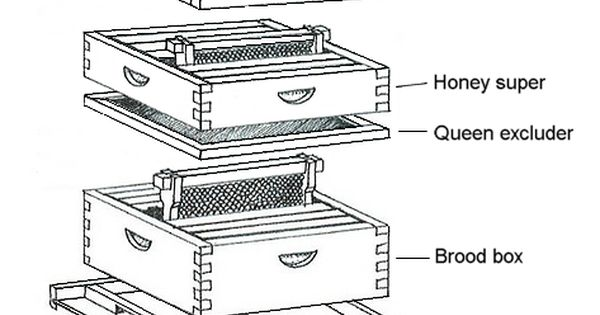 Beehive Diagram Plans Diy Free Download Plans Outdoor Wooden Table