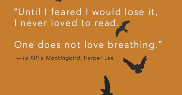 the learning experiences of scout in to kill a mockingbird by harper lee To kill a mockingbird is a book written by harper lee  jem leads this change,  as he is older than scout, but both children experience it at the.