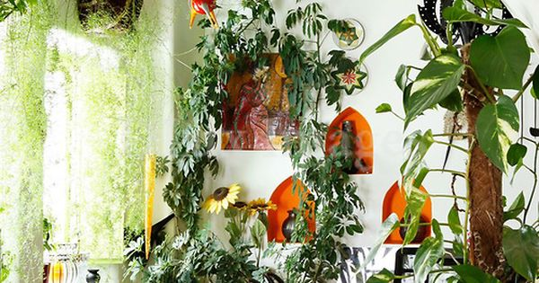 Indoor garden i love it. This is how I would Like my
