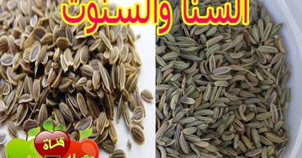 Image السنا والسنوت وكيفية استعمالهم في علاج مختلف الأمراض Youtube Food Almond