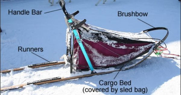 Learn how to use your Sled Dogs Snowskates! - Tutorial ...