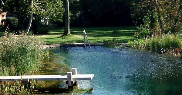 Piscina natural paisajes pinterest piscinas for Piscinas naturales argentina