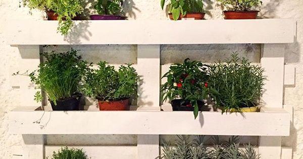 Pallet orto verticale fai da te riciclo creativo erbe - Giardino verticale fai da te ...