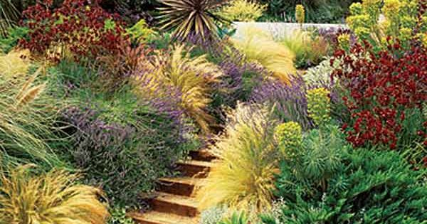 Drought tolerant, yet colorful and textured landscape. I guess this is what