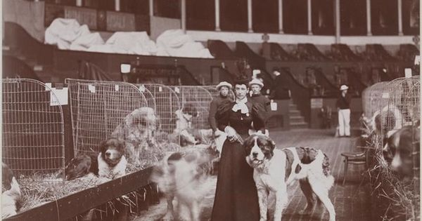Dog Show Inside The Second Madison Square Garden 1897 Designed By Famed Architect Stanford
