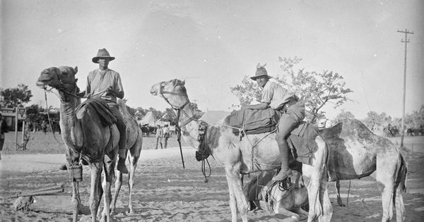 a history of australia and new zealand army corps The australian and new zealand army corps (anzacs) fought, most notably, during the ill-fated gallipoli campaign, in 1915, when an assault was launched on the ottoman empire, in what is now turkey.