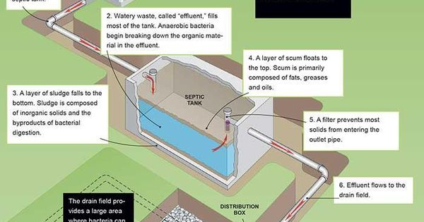 How A Septic Tank Works Septic Tank