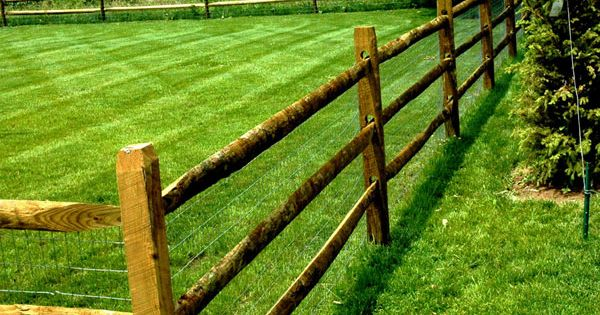 Wooden Split Rail Fence With Wire For The Dogs Way