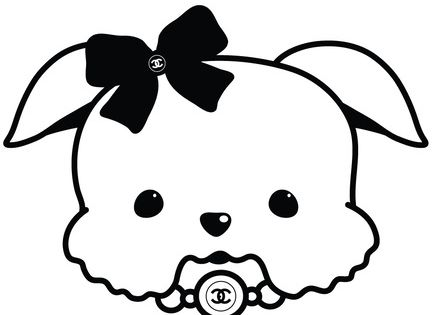Yorkshire Terrier Maltese Poodle Toy French Bulldog And Shih