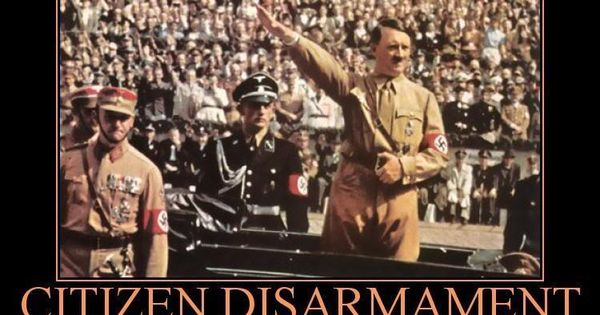 essay on adolf hitler's rise to power