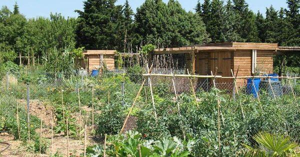 Les jardins familiaux ville de montpellier vegetable garden pinterest ville de - Terrasse et jardin en ville montpellier ...