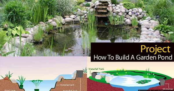 How to build a garden pond project garden ponds ponds for How to build a koi pond on a budget