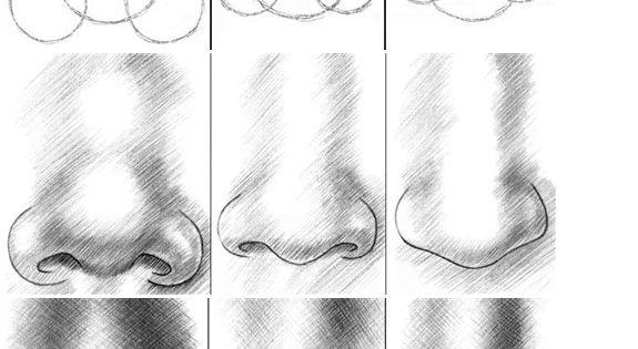 tekenen portrettekenen � neus en oren juf linn model