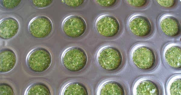Preserving Cilantro Cilantro Sauce, A Condiment (a recipe from Kris that I