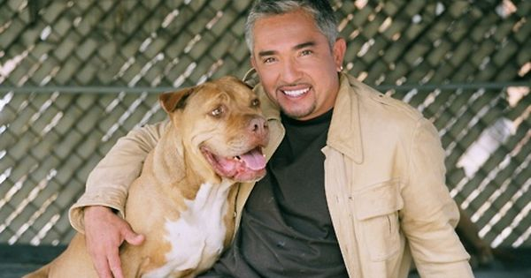 R.I.P Daddy with Cesar Milan
