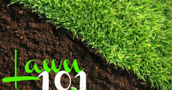 Your Ultimate Lawn Care Cheat Sheet Lawn Fertilizer Lawn Soil