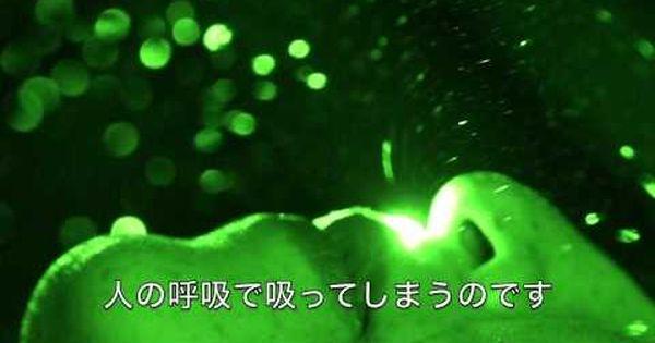 レーザー可視化 マツミハウジング 涼温な家 Youtube 可視化 家 レーザー