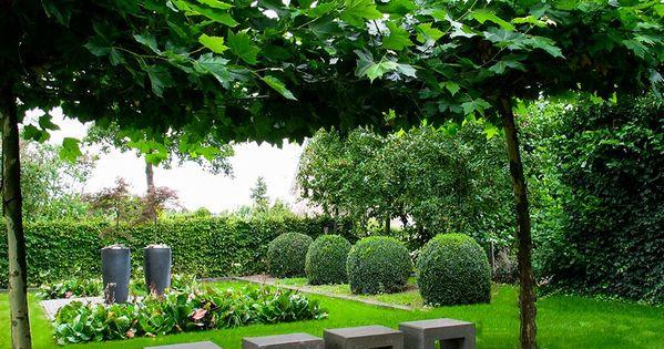 Strakke vlakverdeling in landelijke tuin met buxus bollen inspiratie nieuwe tuin pinterest - Eigentijds pergola design ...