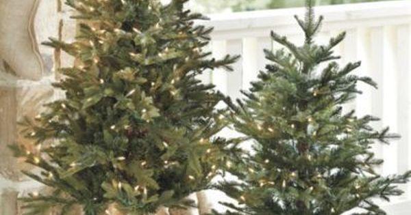 rustic christmas trees