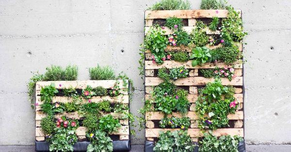 ein toller blickfang f r jeden balkon eine europalette als vertikale bepflanzung for. Black Bedroom Furniture Sets. Home Design Ideas