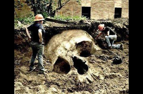 dr hovind giant human skeletons illuminati cover up