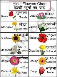 Related Image Flower Chart Hindi Language Learning Hindi Alphabet