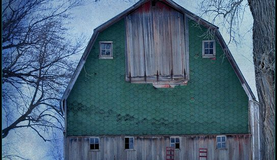 Green barn in snow