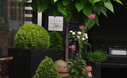 kugel trompetenbaum 39 nana 39 catalpa bignonioides 39 nana 39 outdoor pinterest. Black Bedroom Furniture Sets. Home Design Ideas