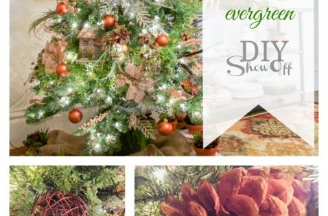 DIY Show Off | Succulents, Christmas Trees and Challenges