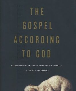 The Gospel According To God Rediscovering The Most Remarkable Chapter In The Old Testament John Macarthur 9781433549571 In 2020 Christian Books Old Testament Gospel
