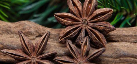 Conheca 5 Banhos Poderosos Com Anis Estrelado Banho De Ervas