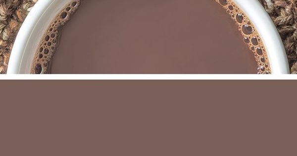 Sherwin Williams Brown Paint Color Hot Cocoa Sw 6047