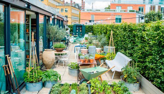 Conran rooftop garden for 14 m4s garden terrace