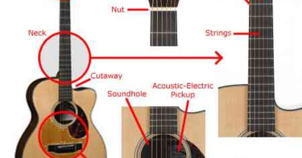 guitar string diagram action refers to the distance of the strings above the fingerboard. Black Bedroom Furniture Sets. Home Design Ideas
