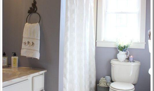 Home tour guest bathroom paint colors mauve and window for Mauve bathroom ideas