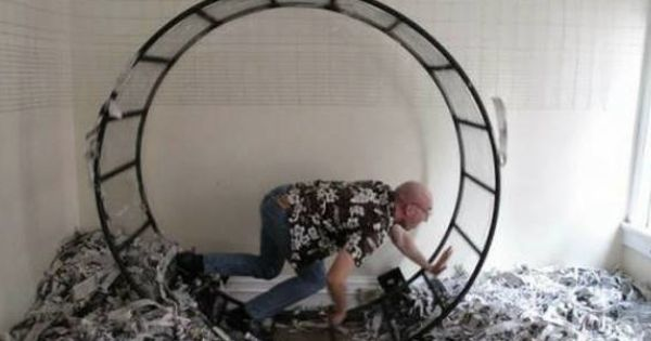 The Craziest Craigslist Ads Will Have You Rolling On The Floor