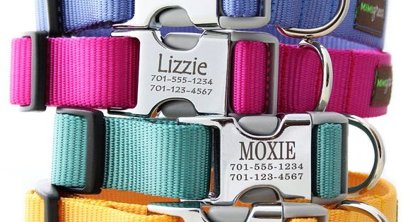 personalized dog collar! Cute idea!