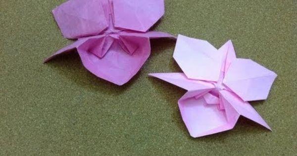 daily origami 764 orchid youtube origami animais e