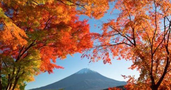 5 Tempat Terbaik Untuk Menikmati Romantisnya Musim Gugur Di Jepang