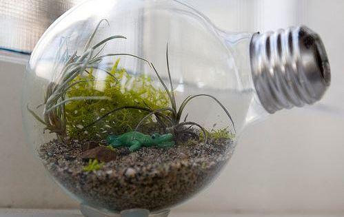 ... ampoules usagées à la poubelle ! Vase, lampe à huile, boule de