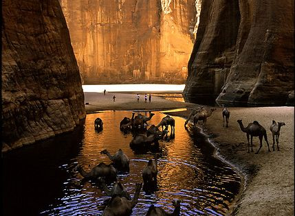Guelta d'Archei, Ennedi region, Chad | Guelta is a local word for