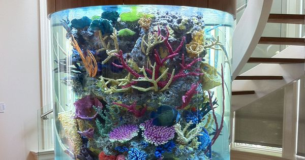 Awesome Custom Aquariums Acrylic Tank Manufacturing