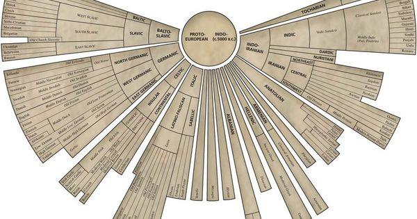 languages infograph