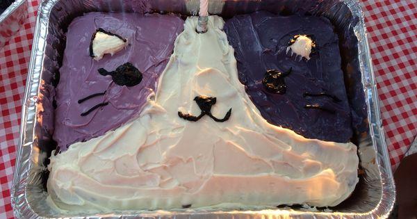 Image Result For Oreo Ice Cream Cake Recipe Pinterest
