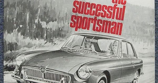 successful sportsman 20 swedish superstars in sports from world-class cross-country skier charlotte kalla to tennis legend björn borg pärson, one of the most successful swedish alpine skiers, has won a combined total of 19 world championship and olympic medals.