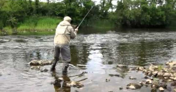 Paddy Mcdonnell S Video On The Moy Moy Fishing Ireland Fly Fishing Salmon Flies River Fishing
