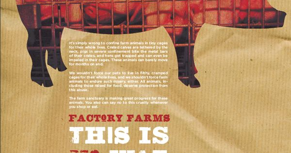 factory farming should be illegal Factory farming should be  smoking should be treated as a drug and made illegal  encourage children to think of reasonable and valid arguments the argument.